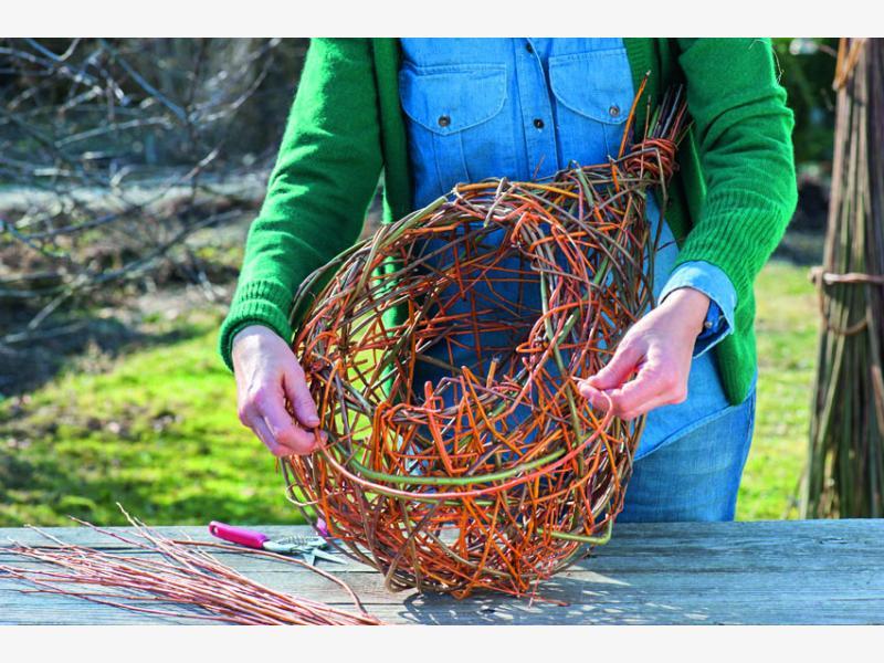 плетем корзины из ивы 6