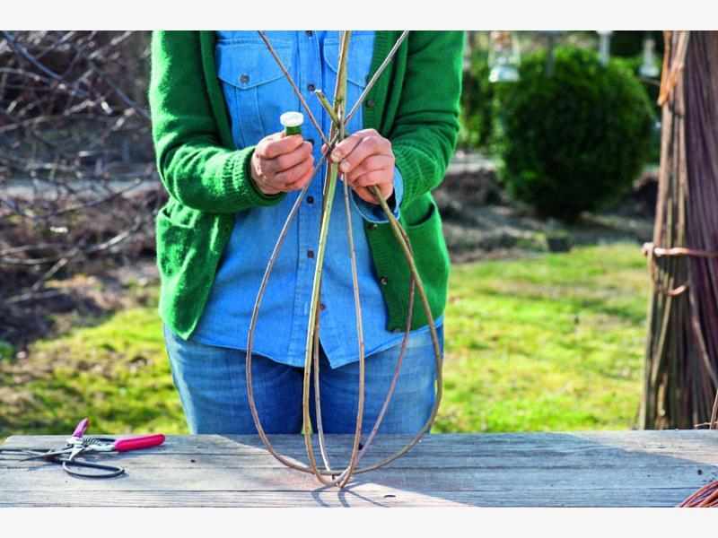плетем корзины из ивы