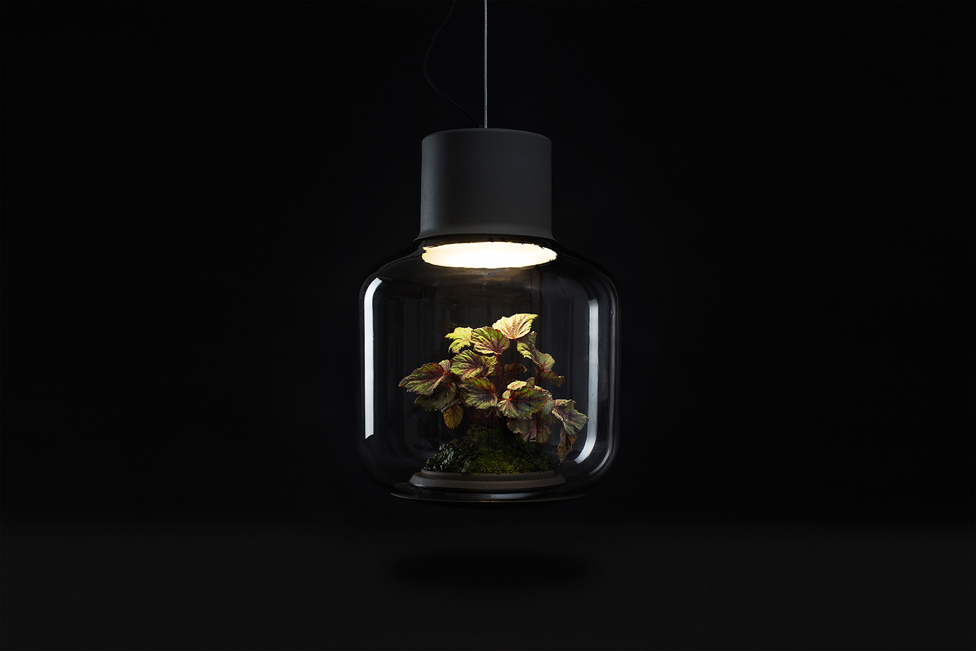 mygdal_lamp_05